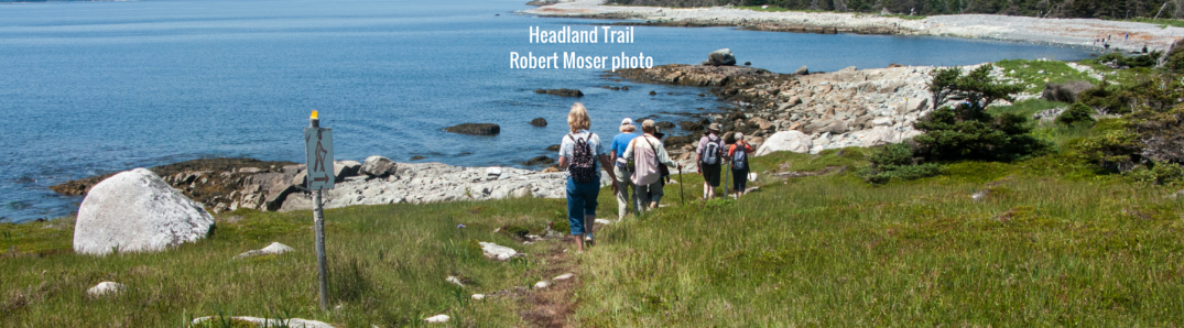 Headland Trail Taylor Head Provincial Park
