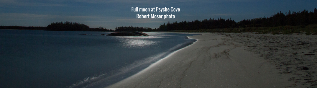 Full moon Taylor Head Provincial Park